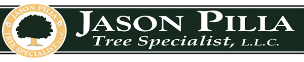 Logo, Jason Pilla Tree Specialist, LLC